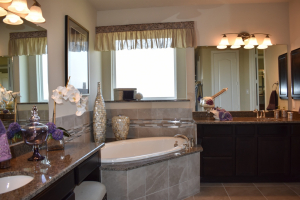 Devon Street at Lakes of Savannah Master Bathroom