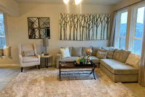 Devon Street at Lakes of Savannah Living Room